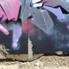 Conz Graffiti