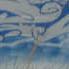 Zed Graffiti