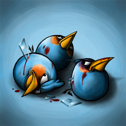 angry birds in pain blue birds