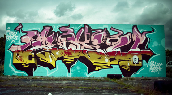 graffiti artists nz. The graffiti artist, Askew has
