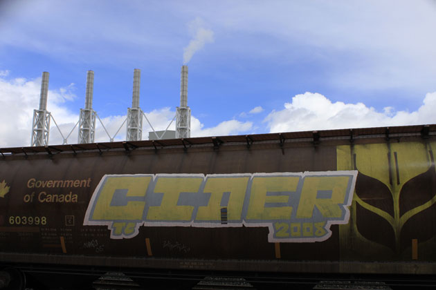 cider graffiti freight train