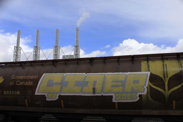 cider graffiti freight train