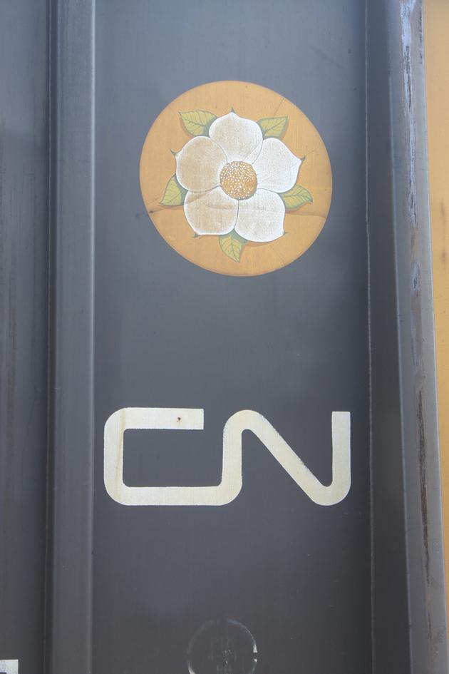 cn flower