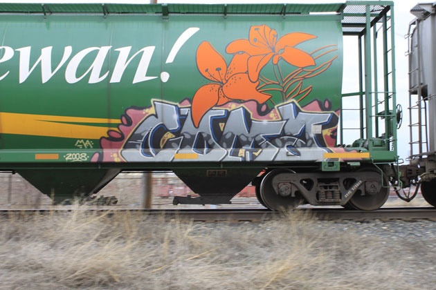 coma graffiti new saskatchewan hopper