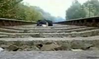 Crazy Kid on Railroad Tracks