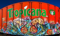 Panoramic Freight Graffiti Photos