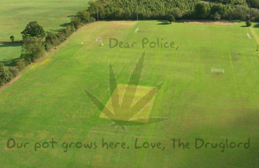 Google Earth Marijuana Bust