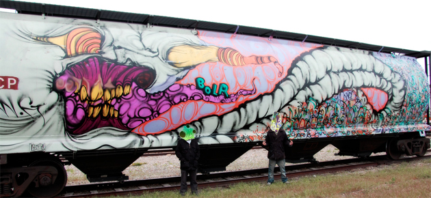 grominate bolr wholecar