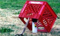 How To Catch A Tagger