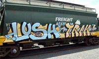 Lush Graffiti Interview