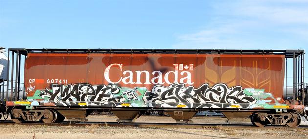 maple shock graffiti
