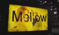 Posterchild – Mellow Yellow New York City