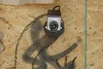 Posterchild's Bird Cameras