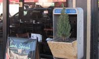 Posterchild's Tree Phone in Edmonton