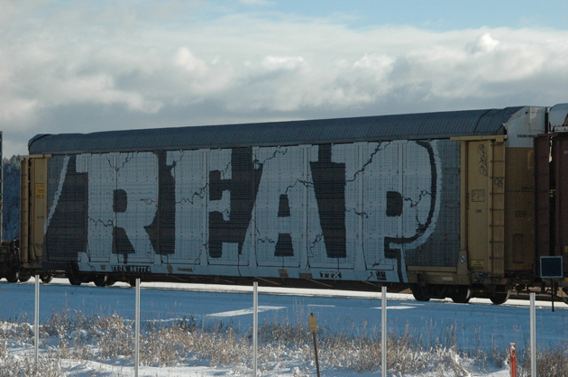 reap graffiti wholecar