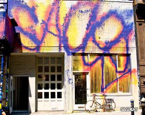 Sacer Graffiti