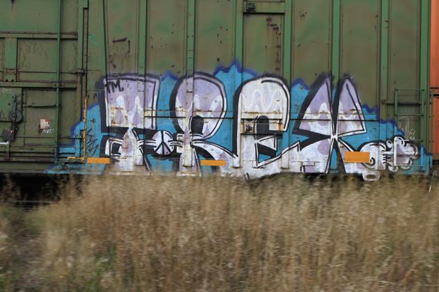 trex graffiti