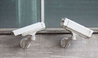 Vandal Security Cameras
