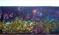 New Witnes & Ewok Wall