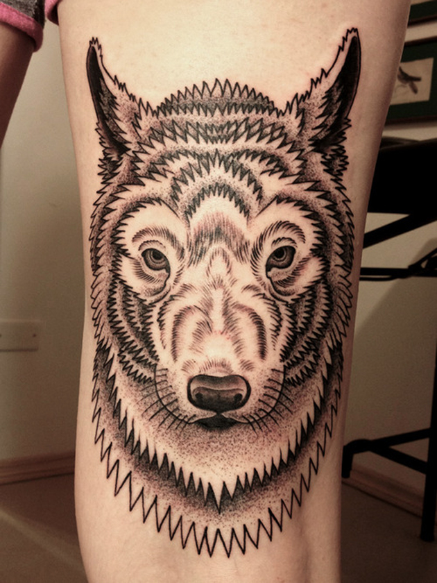Black and grey wolf by gregorio marangoni from são paulo brazil