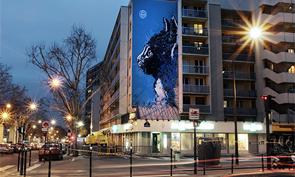 C215 in Paris