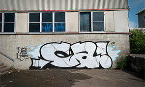 Crazy Apes Graffiti Interview