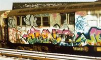 Graffiti 101