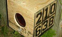 Posterchild's 21063-B Betabot