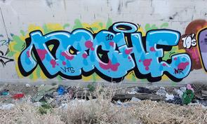 Niche Graffiti Interview