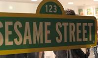 Sesame Street at Known Gallery Video Recap