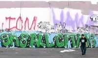 Skate All Cities On Vimby