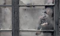 Fogged Window Drawings Animation