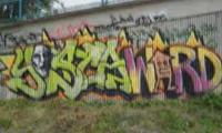 Yesca & Werd Graffiti Video